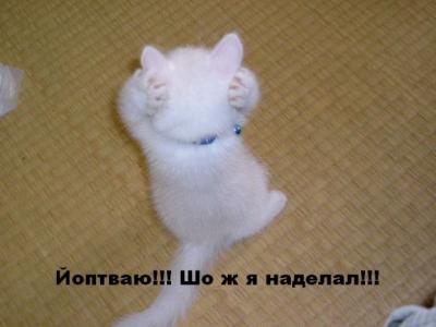 post-1-1169794046_thumb.jpg