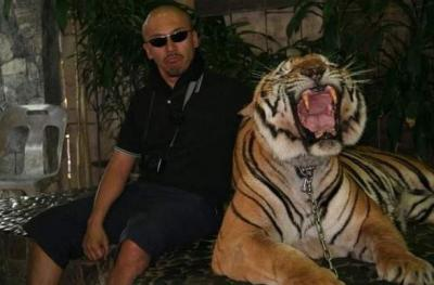 tiger (1035).jpg