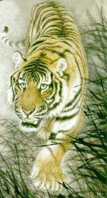 тигры разные (6).jpg