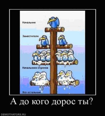 post-53-126044345316_thumb.jpg