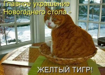 post-2898-12622628575_thumb.jpg