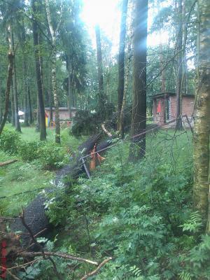 13-06-2010 буря (12).jpg