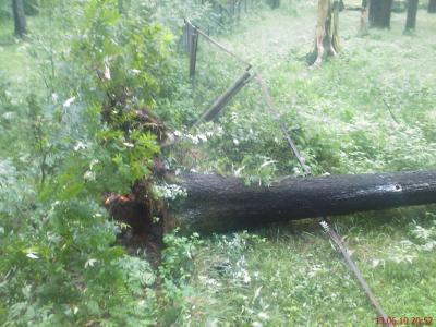 13-06-2010 буря (14).jpg