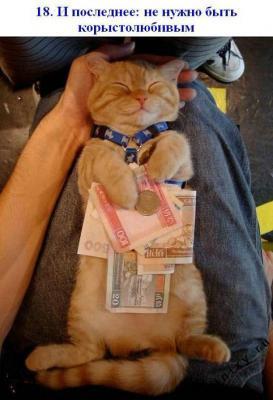 кот и денежки).jpg