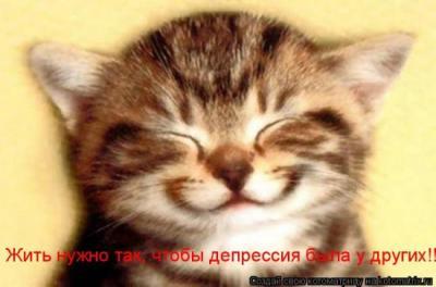 42908368_1240426536_1238196933_1237937670_kotomatrix_18.jpg