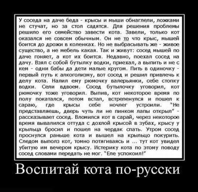 pjatnichnye_demotivatory_130_foto_16.jpg