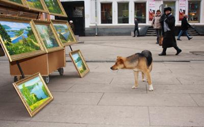 смешной пес.jpg