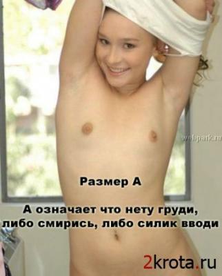 1207925768_1.jpg