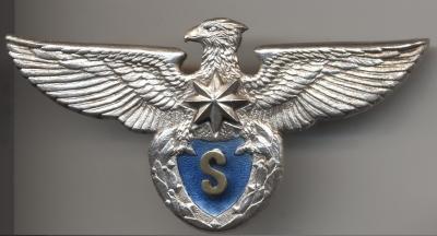 Молдова-пилот-S-класса+.jpg