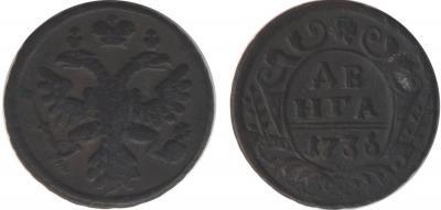 1736-denga.jpg