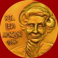 22 апреля 1909 Рита Леви-Монтальчини.jpg