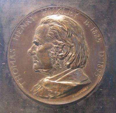 4 мая 1825 года родился — Томас Генри Хаксли.jpg
