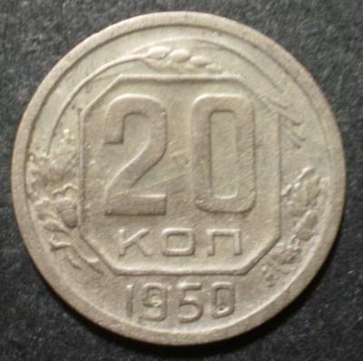 P6090010.JPG