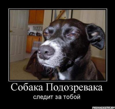 post-696-130821363516_thumb.jpg