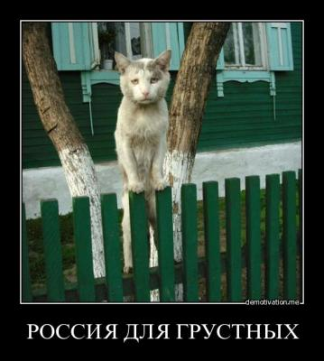 post-19569-130941523286_thumb.jpg