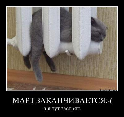 post-19569-130941531022_thumb.jpg