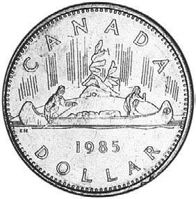 NZ mule-r.jpg