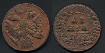1743-denga.jpg