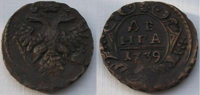 1739-denga.jpg