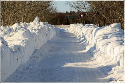 talvine-tee.jpg