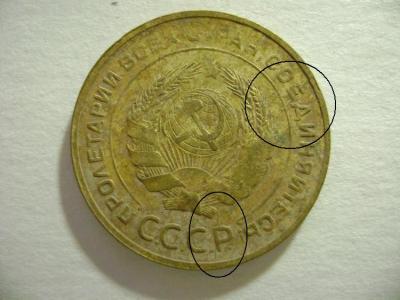 DSC08564.JPG