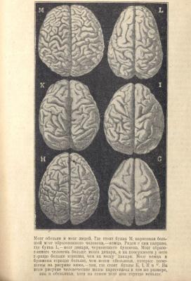 1918-3.jpg