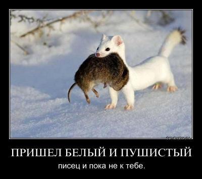 post-281-133087113435_thumb.jpg