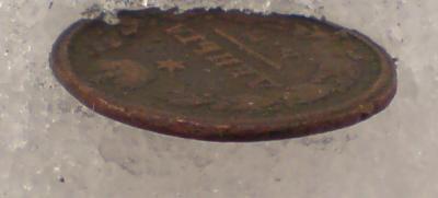 DSC00012_cr.jpg