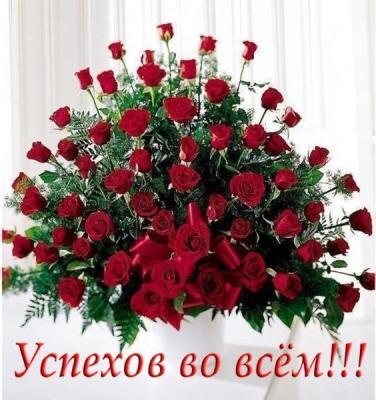 56182066_c32d6e99f99a.jpg