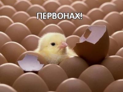 post-13108-133776547694_thumb.jpg