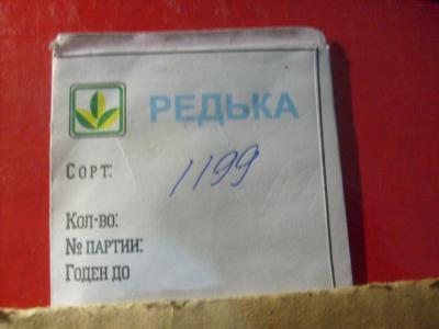S6302463.JPG
