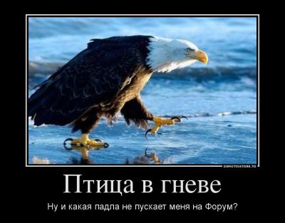 post-22515-134415811721_thumb.jpg