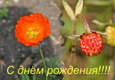 post-3958-134622012747_thumb.jpg