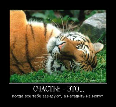 post-13108-134685067906_thumb.jpg