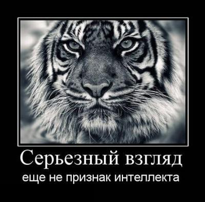 post-53-134685175381_thumb.jpg