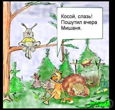 otdahni.ru_1334838793_-korsun1312.jpg