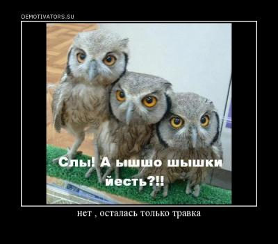 post-24180-0-89569700-1354820425_thumb.jpg