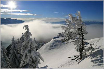 winter-sun-2.jpg