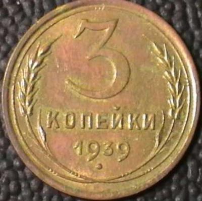 1935510.jpg