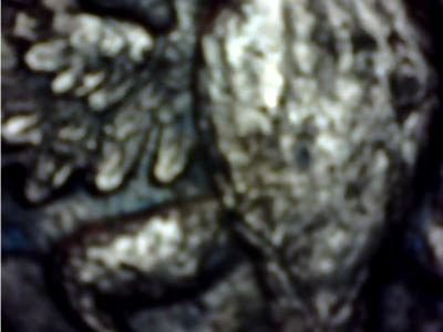 post-17979-0-80969100-1361997267_thumb.jpg