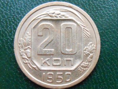 RSCN19462.JPG