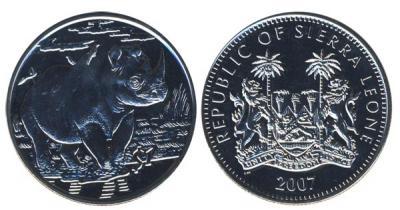 носорог1.jpg