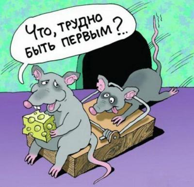 мышь и сыр.jpg