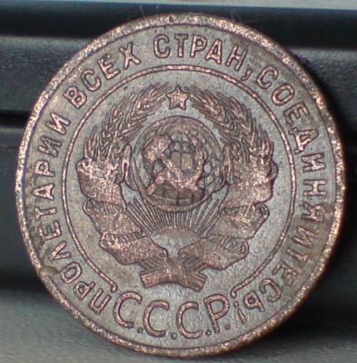 DSC00015_cr.jpg