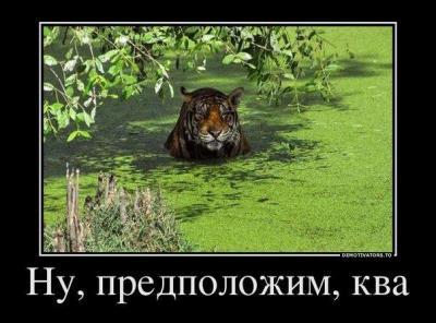 0_b6260_97669729_XL.jpg