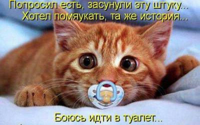 post-9990-0-90081300-1371153071_thumb.jpg