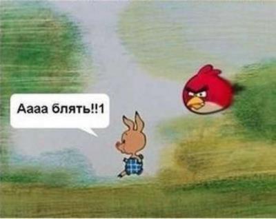 картинки-Angry--Birds-пятачок-песочница-205316.jpeg