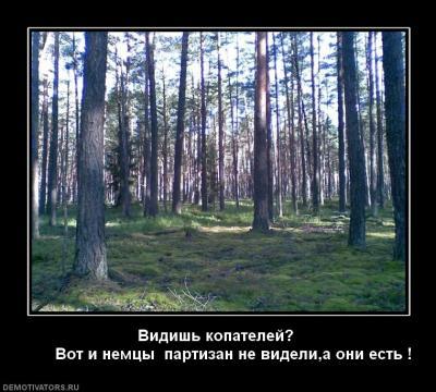 post-8477-0-21834400-1374754367_thumb.jpg