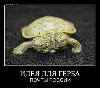 post-22261-0-00671300-1375270439_thumb.jpg