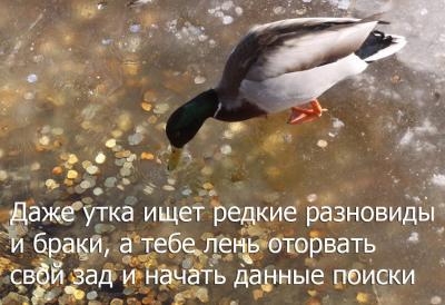 post-22261-0-44088800-1376800572_thumb.jpg